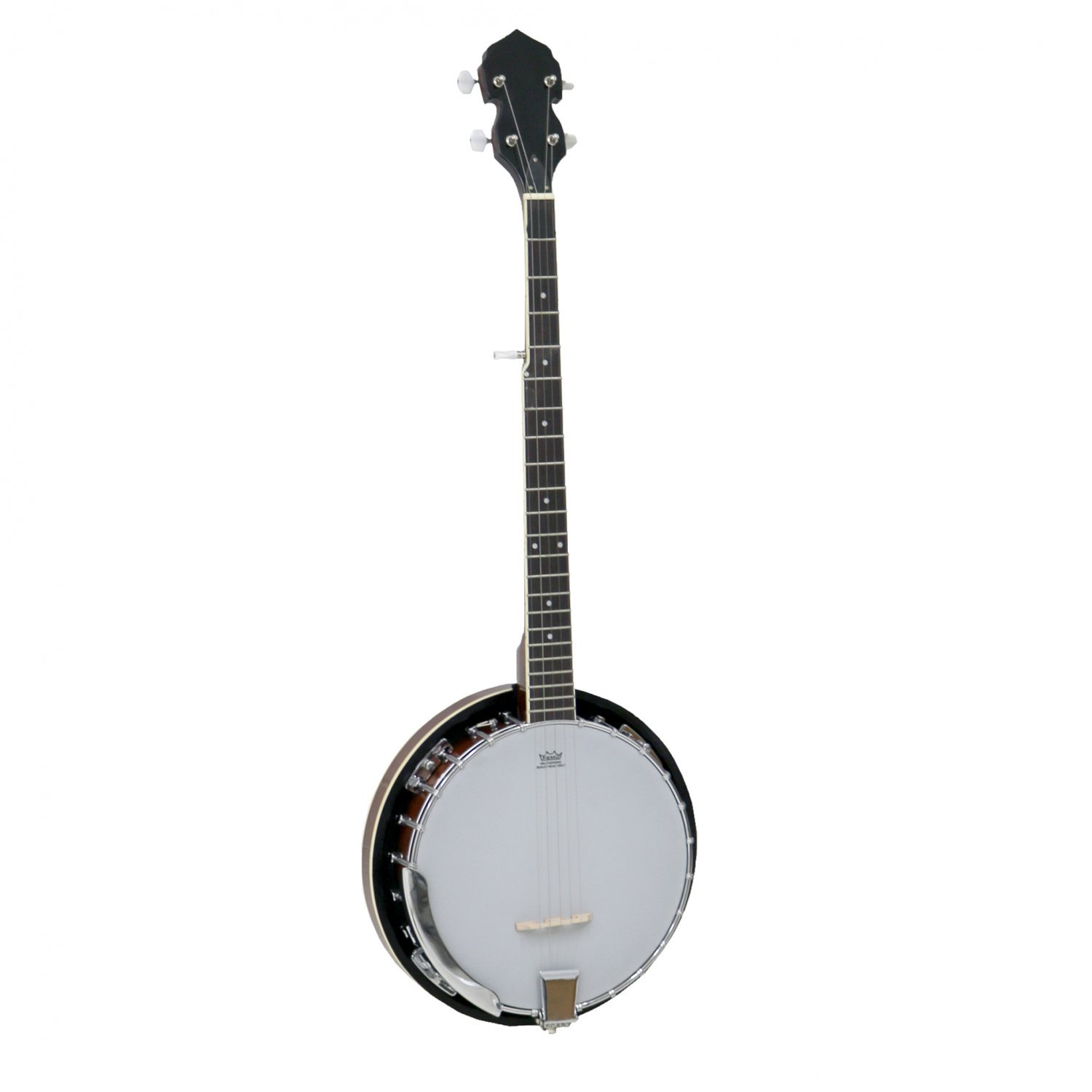 5 String Bluegrass Banjo with Remo Skin